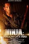 点击播放《忍者2:撕裂的暗影》