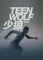 点击播放《少狼 第五季》