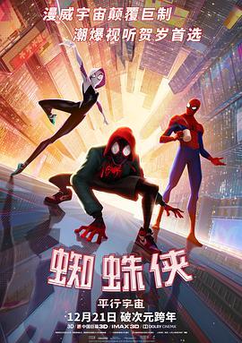 点击播放《蜘蛛侠:平行宇宙》