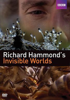 理查德·哈蒙德:看不见的世界