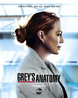 实习医生格蕾 第十七季