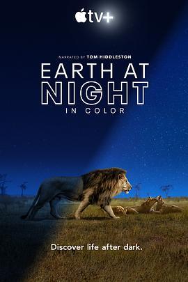 点击播放《夜色中的地球》