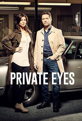 私家侦探第五季 第五季